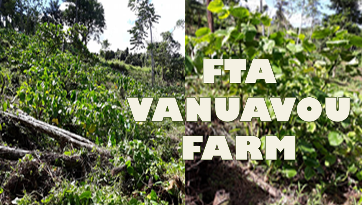 FTA Vanuavou Farm Project